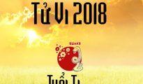 tu-vi-su-nghiep-tuoi-quy-ti-1966-nam-2018-nam-mang